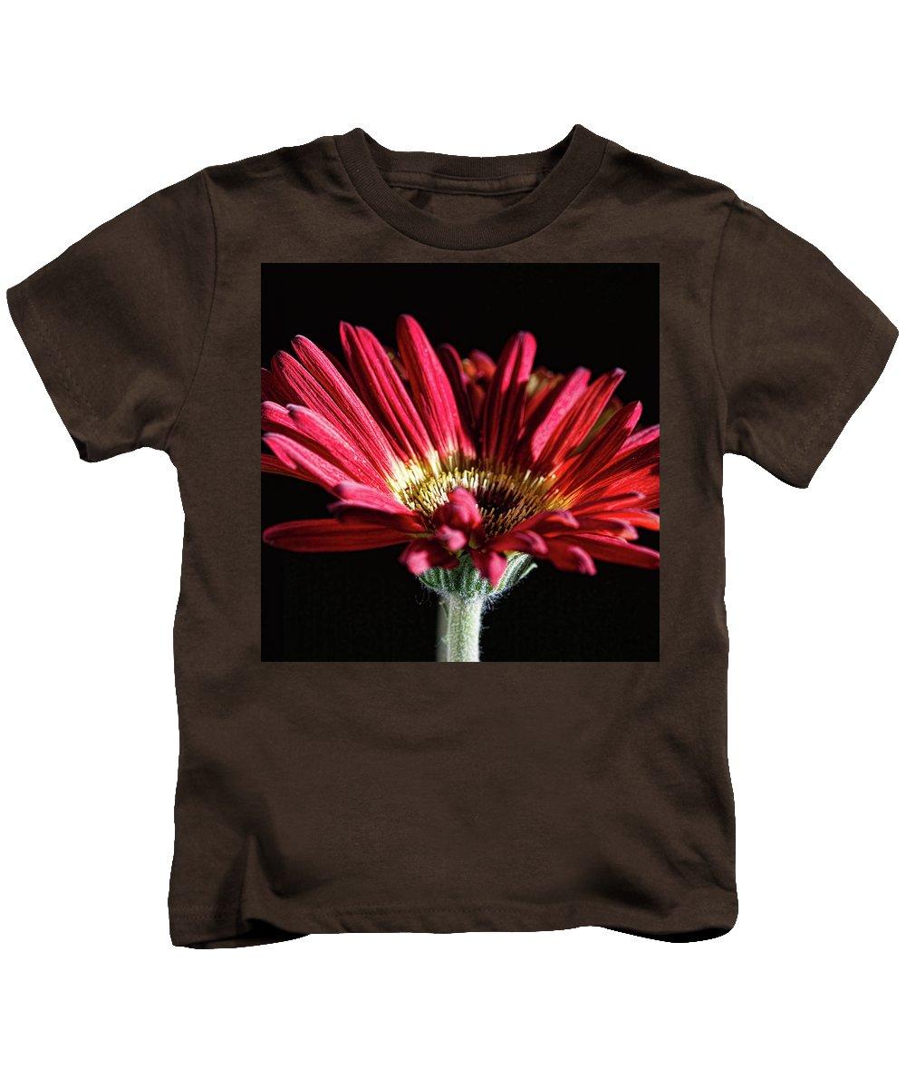 Red Gerbera Flower Kids T-Shirt featuring the photograph Red Gerbera 1 by Steve Purnell