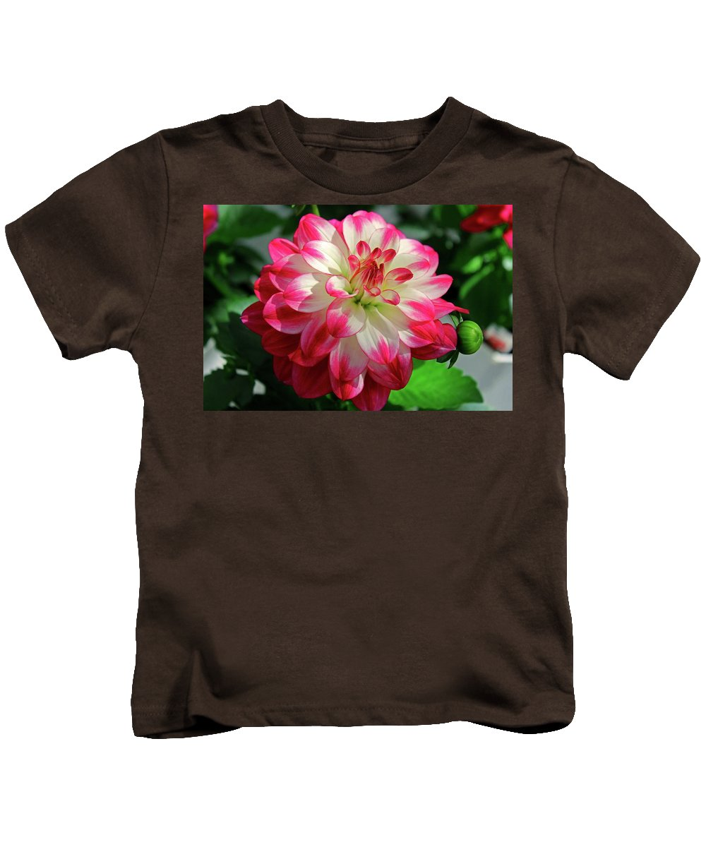 Dahlia Kids T-Shirt featuring the photograph Rockin Red by Michiale Schneider