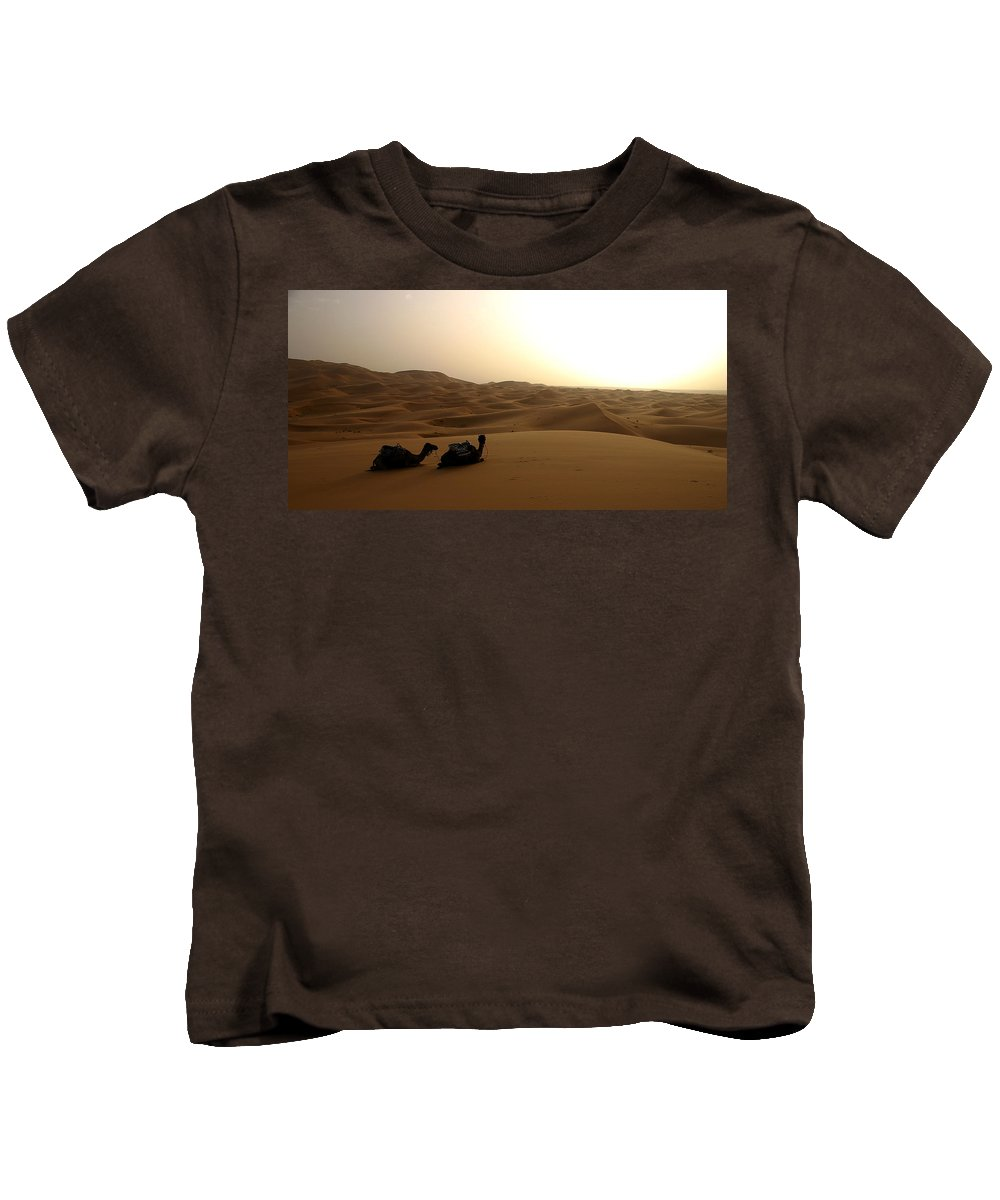 Camel Kids T-Shirt featuring the photograph Two Camels At Sunset In The Desert by Ralph A Ledergerber-Photography