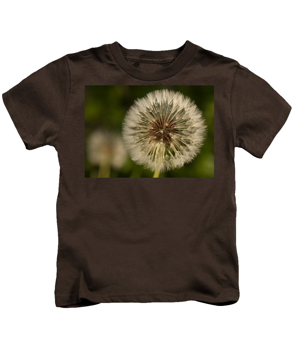 Dandelion Kids T-Shirt featuring the photograph Dandelion by Steven Natanson