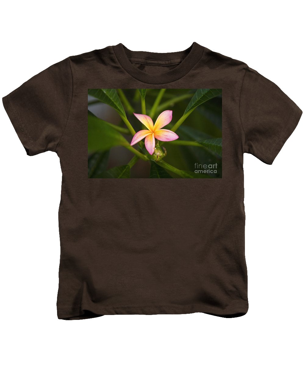 Afternoon Kids T-Shirt featuring the photograph Plumeria Blossom by Ron Dahlquist - Printscapes