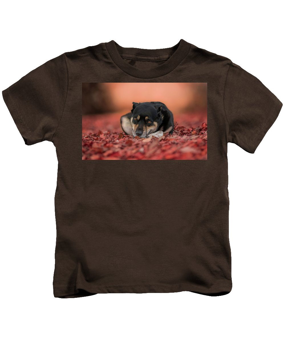 Puppy Kids T-Shirt featuring the digital art Puppy by Dorothy Binder