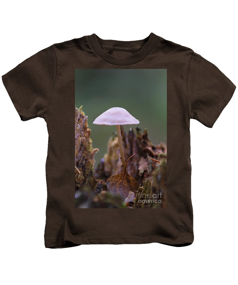 Bokeh Kids T-Shirt featuring the photograph Mushrooms by Brothers Beerens