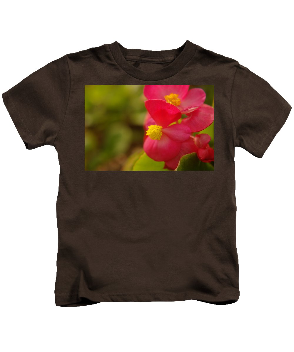 Flowers Kids T-Shirt featuring the photograph A Soft Red Flower by Jeff Swan