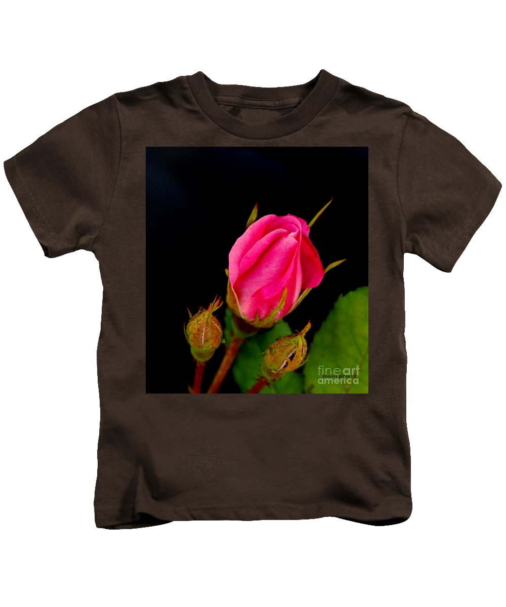 Rose Kids T-Shirt featuring the photograph Admirers by Shelley Jones