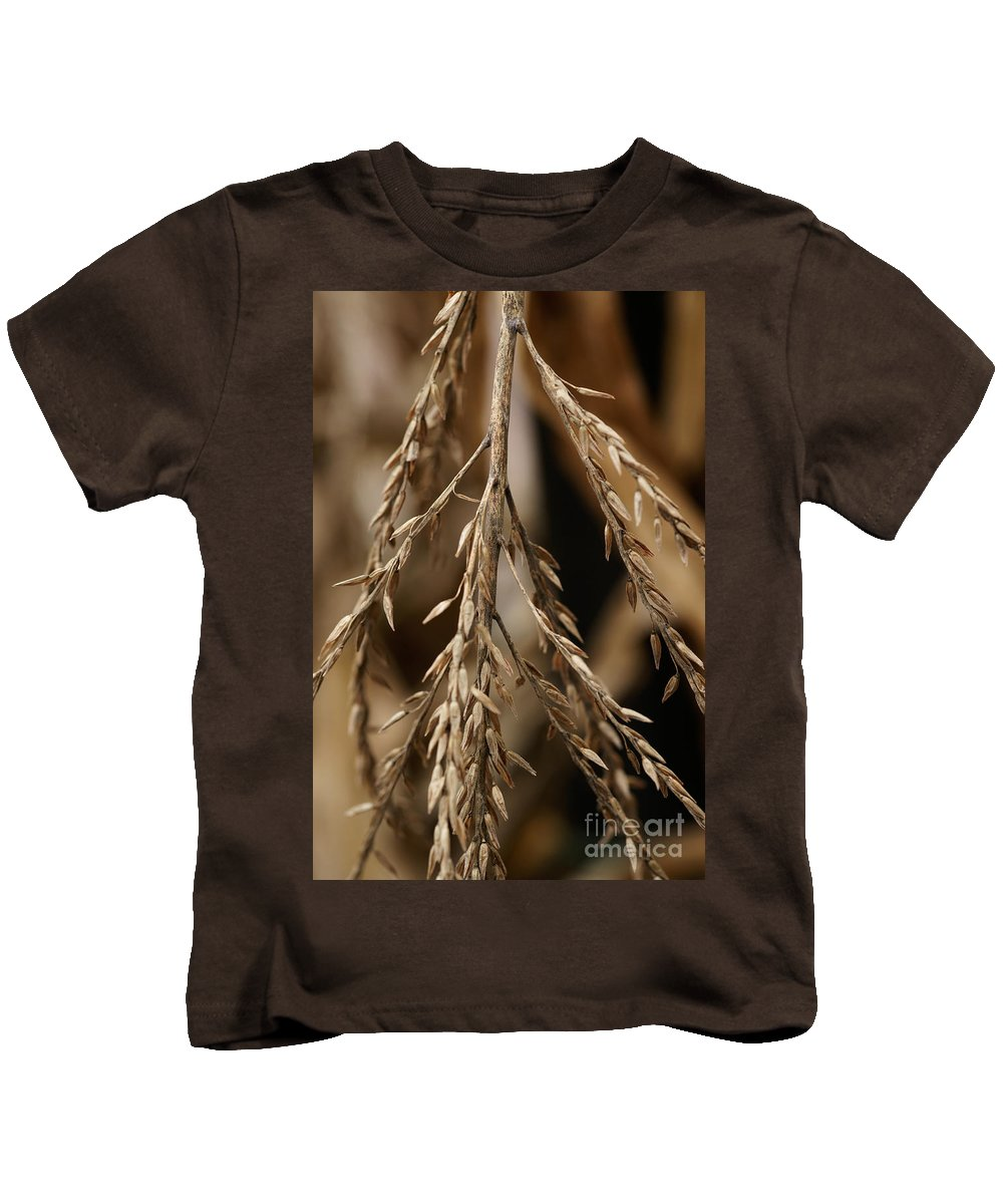 Corn Kids T-Shirt featuring the photograph After The Harvest - 1 by Linda Shafer