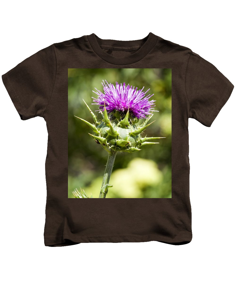 Artichoke Thistle Kids T-Shirt featuring the photograph Artichoke Thistle 3 by Kelley King