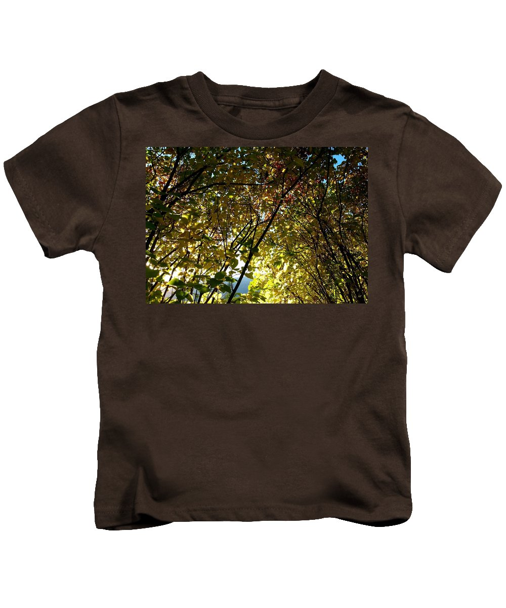 Autumn Kids T-Shirt featuring the photograph Autumn Archway by Will Borden