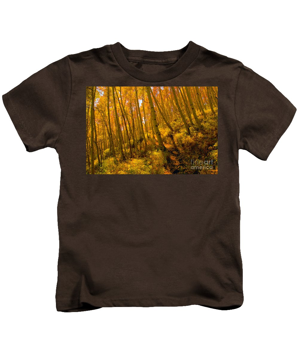 Autumn Kids T-Shirt featuring the photograph Autumn Trail by David Lee Thompson
