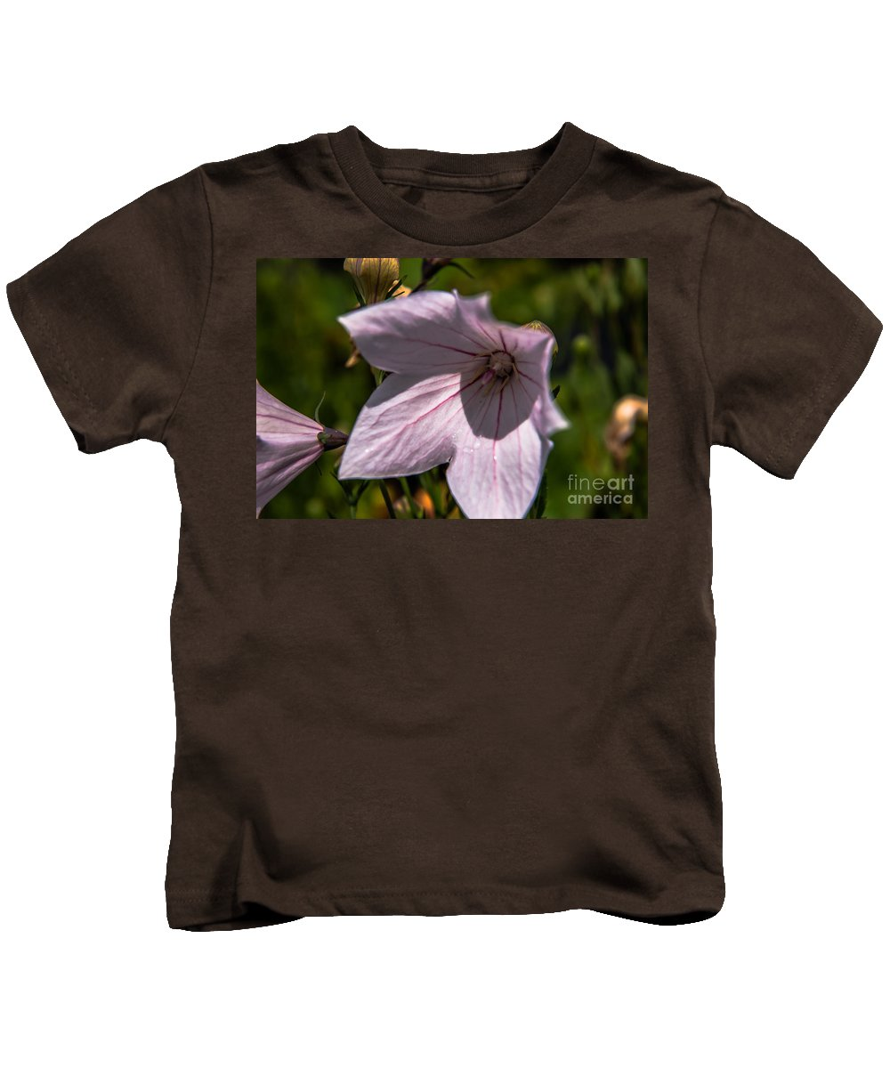 Balloon Flower Kids T-Shirt featuring the photograph Balloon Flower by Sherman Perry