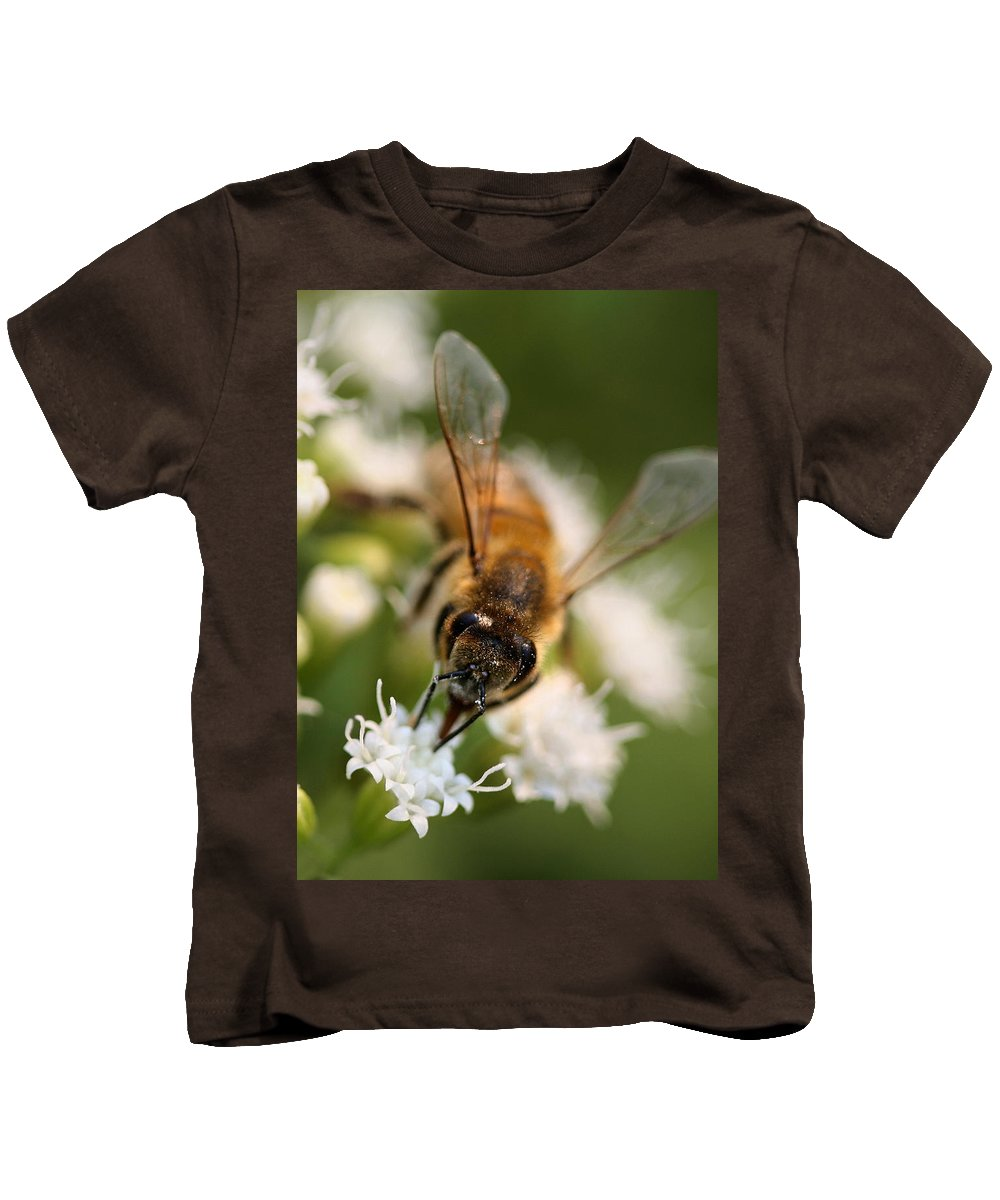 Wasp Kids T-Shirt featuring the photograph Bee On White Vertical by Angela Rath