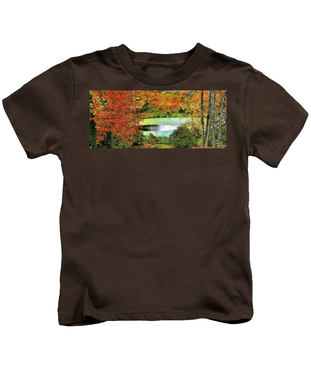 Panoramic Kids T-Shirt featuring the photograph Beyond The Birch Pathway by Kristin Elmquist