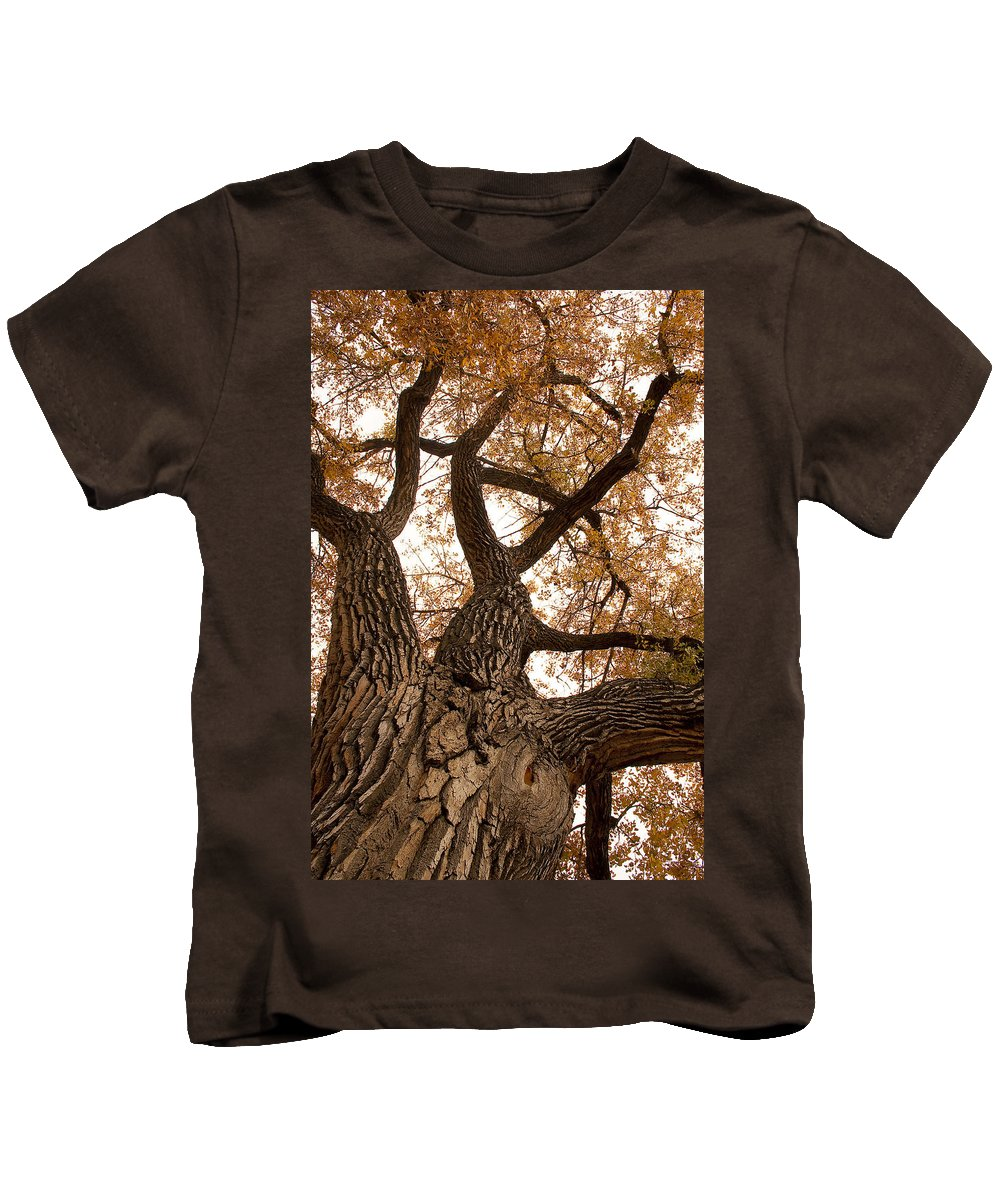 Giant Kids T-Shirt featuring the photograph Big Tree by James BO Insogna
