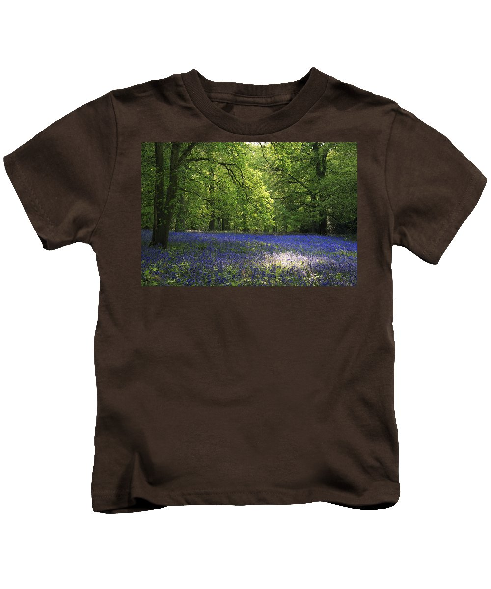 Bluebells Kids T-Shirt featuring the photograph Bluebells by Phil Crean