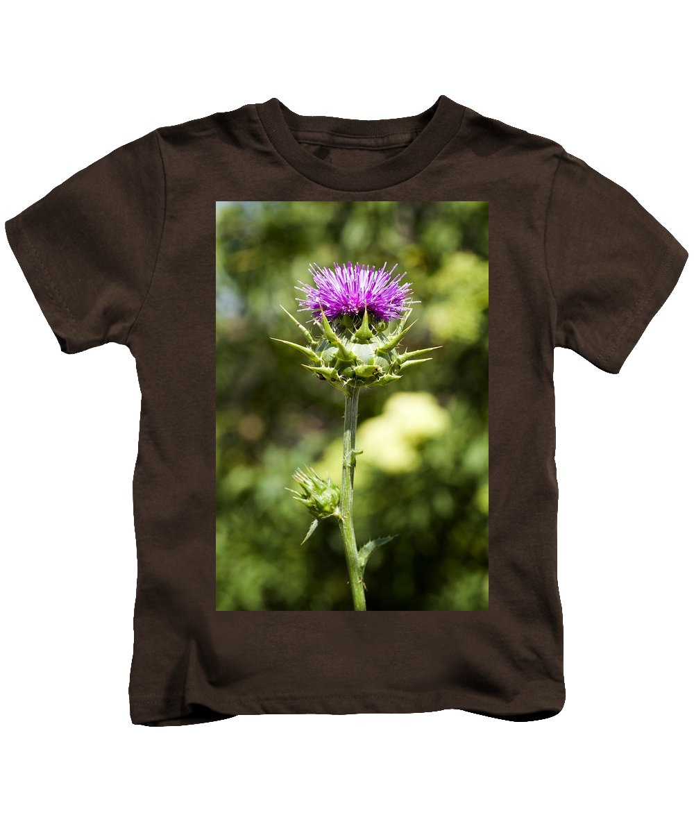Artichoke Thistle Kids T-Shirt featuring the photograph Bold Artichoke Thistle by Kelley King