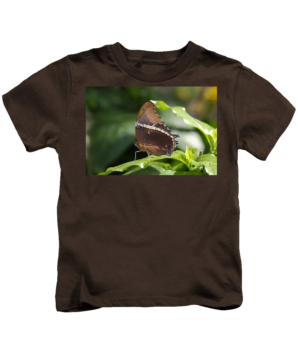 Butterfly Kids T-Shirt featuring the photograph Brown Beauty by David Lee Thompson