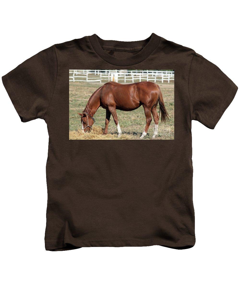 Horse Kids T-Shirt featuring the photograph Brown Horse Eat Ranch Scene by Goce Risteski