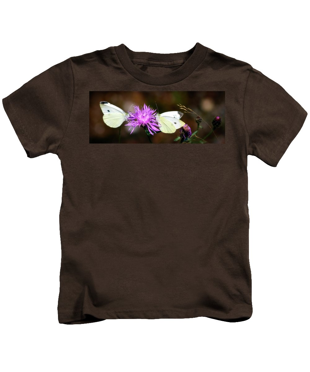 Wildlife Kids T-Shirt featuring the photograph Cabbage Butterflies On Spotted Knapweed by Albert Seger