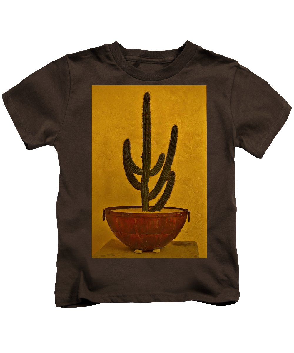 Cactus Kids T-Shirt featuring the photograph Cabo Cactus by Joy Bradley