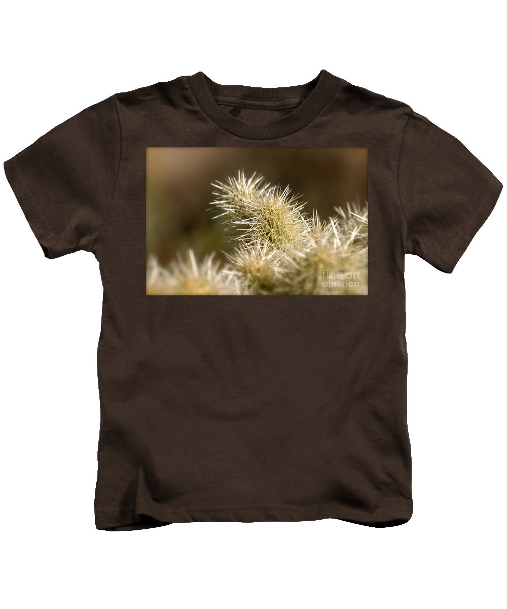 Cactus Kids T-Shirt featuring the photograph Cacti by Nadine Rippelmeyer