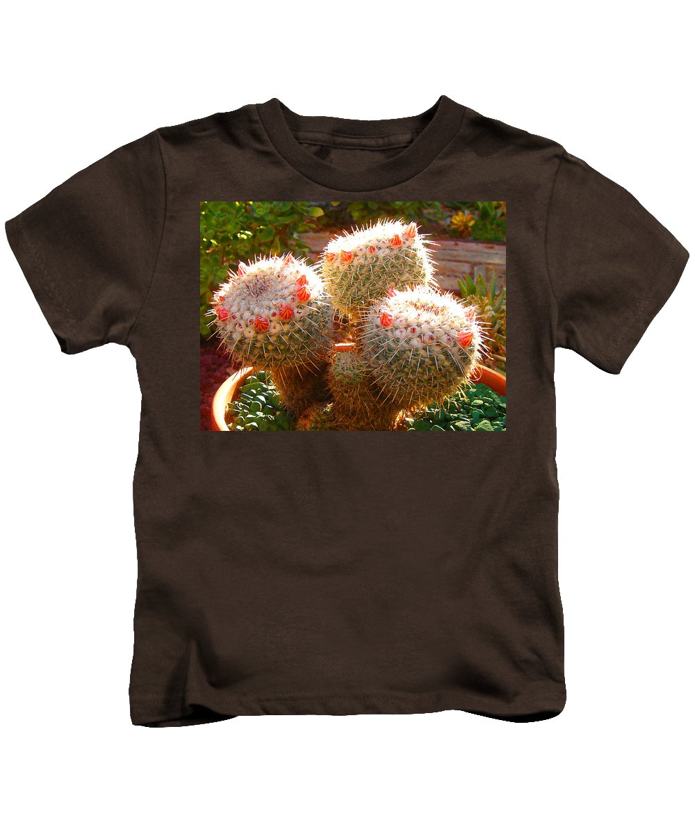Landscape Kids T-Shirt featuring the photograph Cactus Buds by Amy Vangsgard