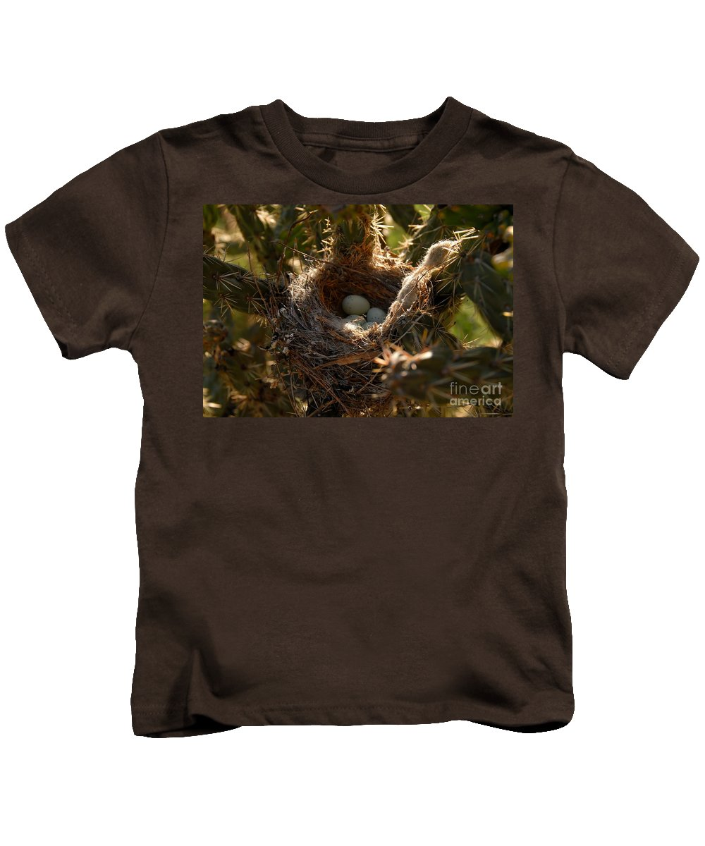 Cactus Kids T-Shirt featuring the photograph Cactus Nest by David Lee Thompson