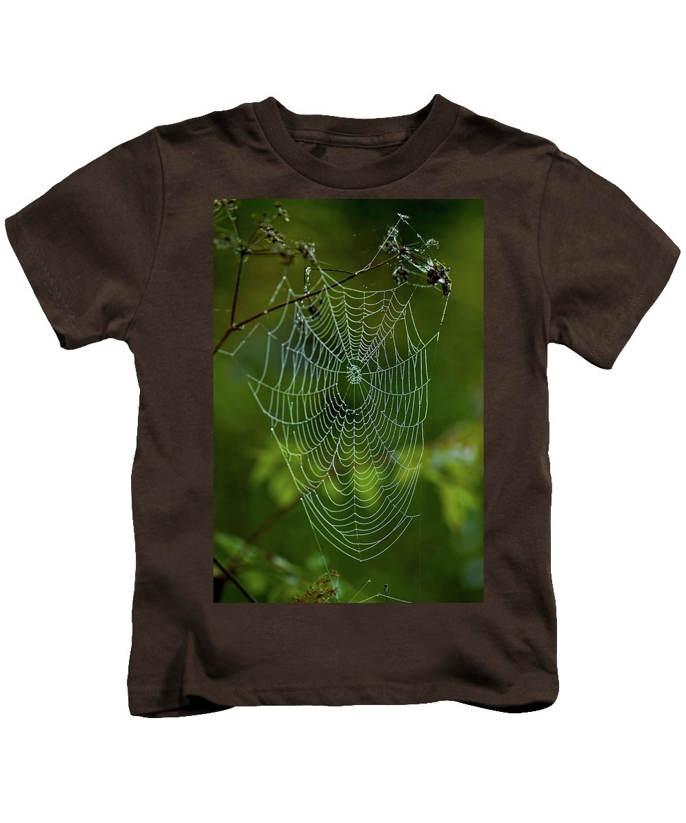 charlotte's Web Kids T-Shirt featuring the photograph Charlotte's Web by Paul Mangold