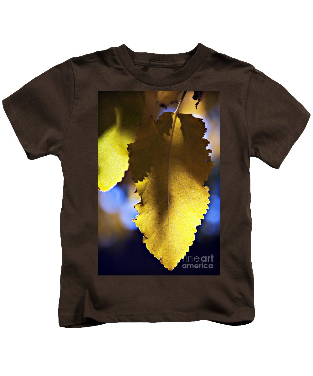 Afternoon Kids T-Shirt featuring the photograph Colorful Autumn Leaf by Ray Laskowitz - Printscapes