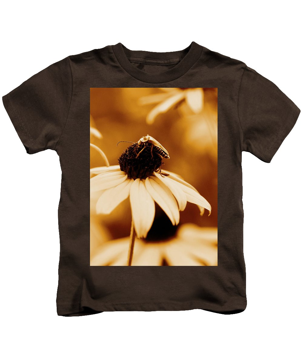 Black Eyed Susan Kids T-Shirt featuring the photograph Comfortably Perched by Angela Rath