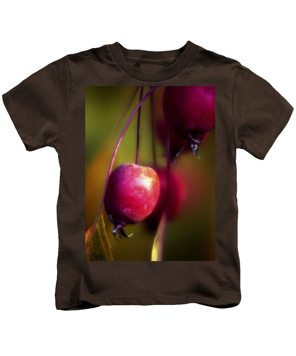 Macro Kids T-Shirt featuring the photograph Crabapple by Lee Santa