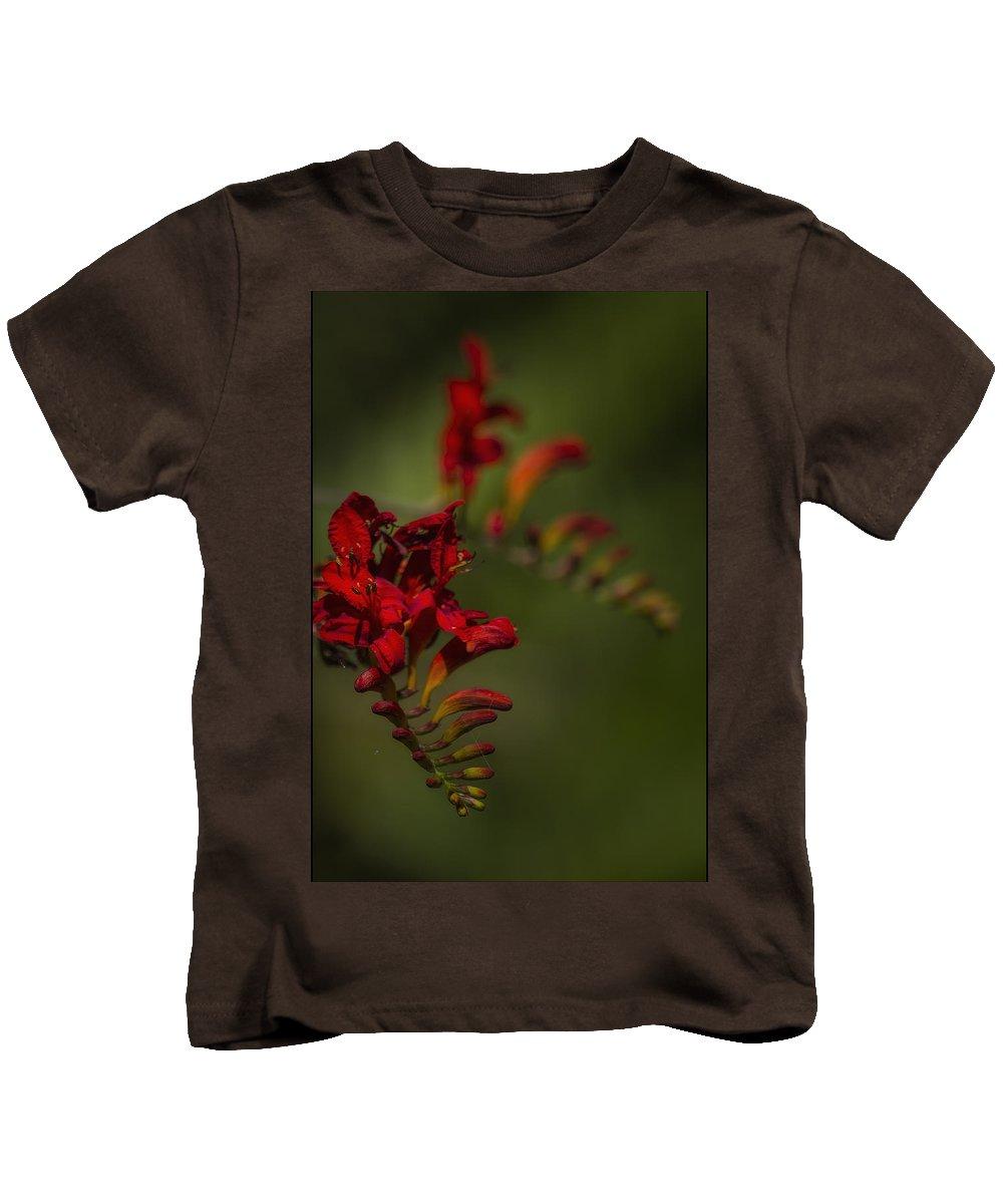 Crocosmia Kids T-Shirt featuring the photograph Crocosmia No. 1 by Belinda Greb