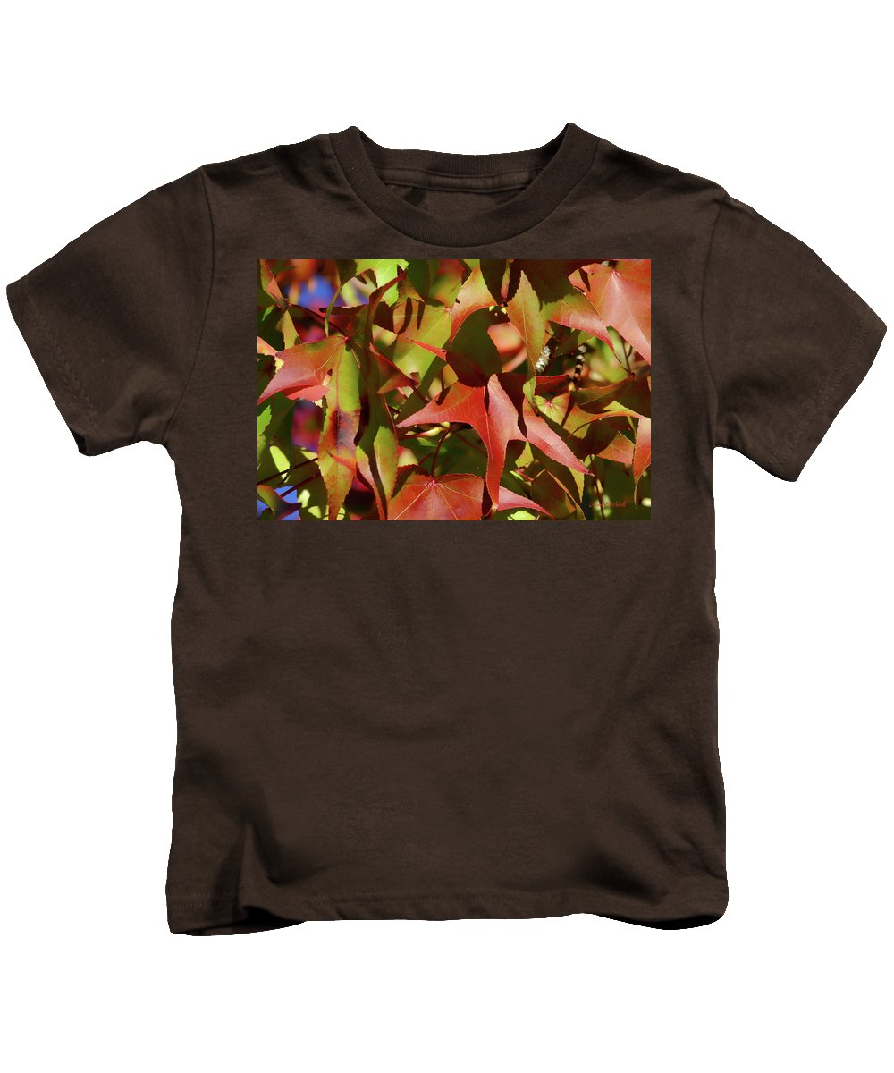 Kids T-Shirt featuring the photograph Don't Leave Me Alone by Donna Blackhall