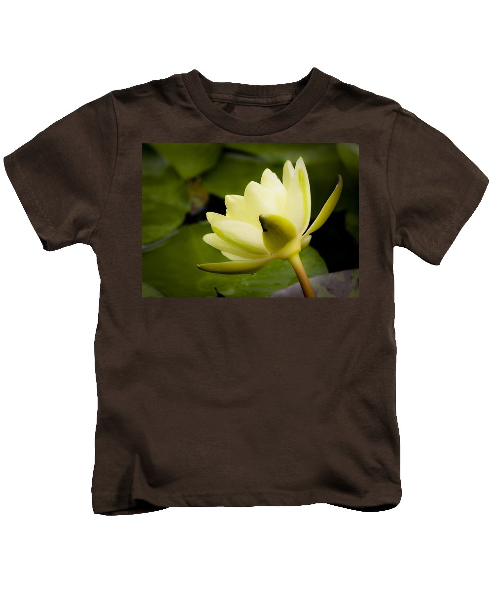 J Paul Getty Kids T-Shirt featuring the photograph Dreamy Water Lilly by Teresa Mucha