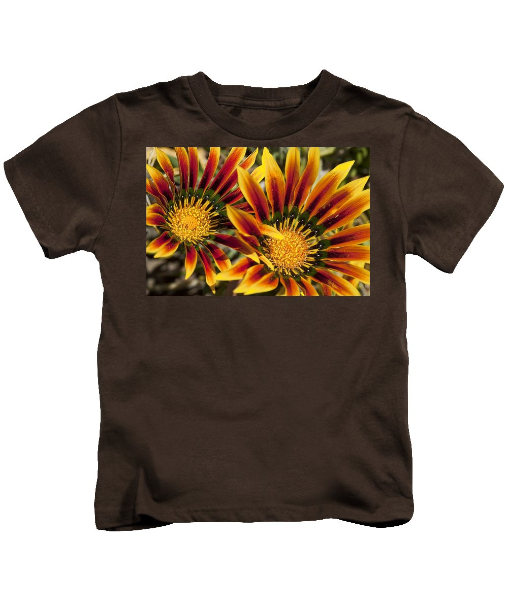 Flowers Kids T-Shirt featuring the photograph Dueling Gerberas by Kelley King