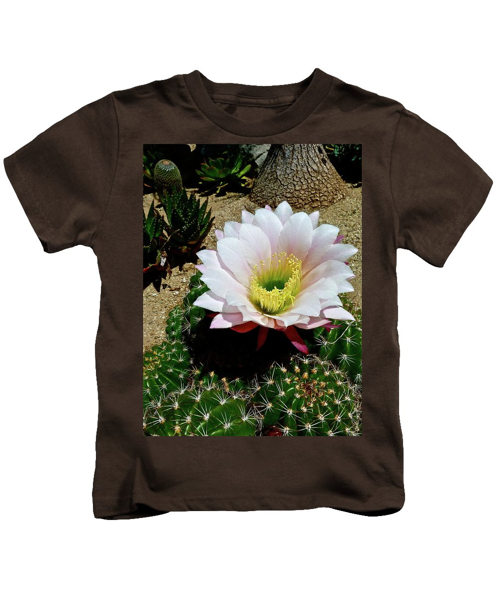 Flowers Kids T-Shirt featuring the photograph Easter Lily Cactus by Diana Hatcher