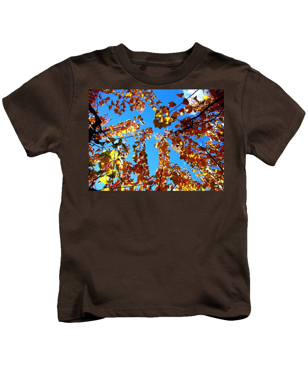 Apricot Leaves Kids T-Shirt featuring the photograph Fall Apricot Leaves by Will Borden