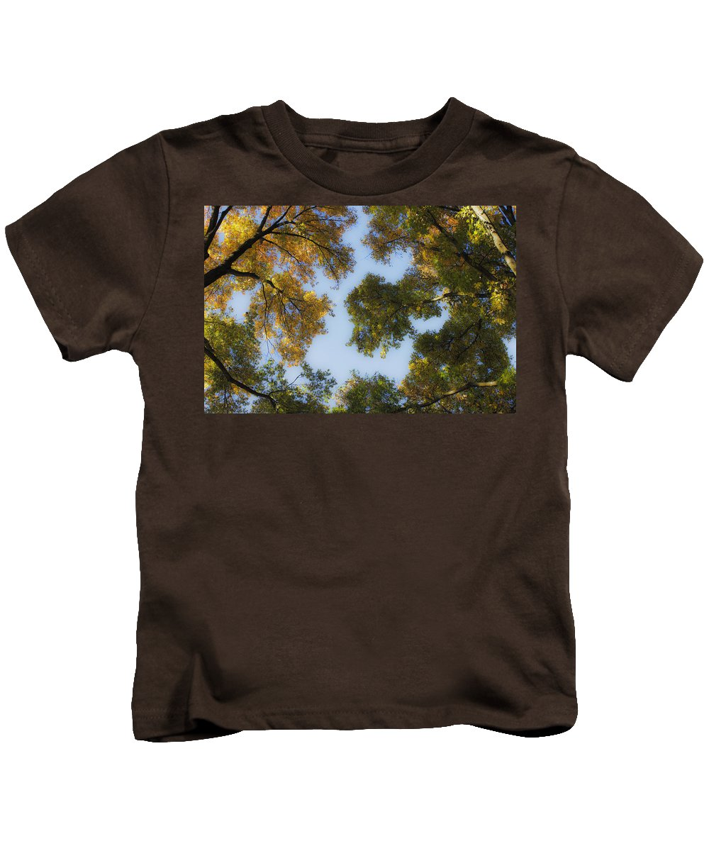 Fall Kids T-Shirt featuring the photograph Fall Canopy In Virginia by Teresa Mucha