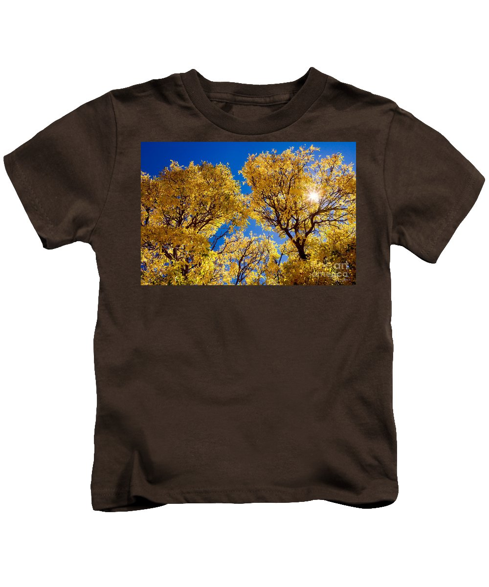 Leaves Kids T-Shirt featuring the photograph Fall Foliage Near Ruidoso Nm by Matt Suess