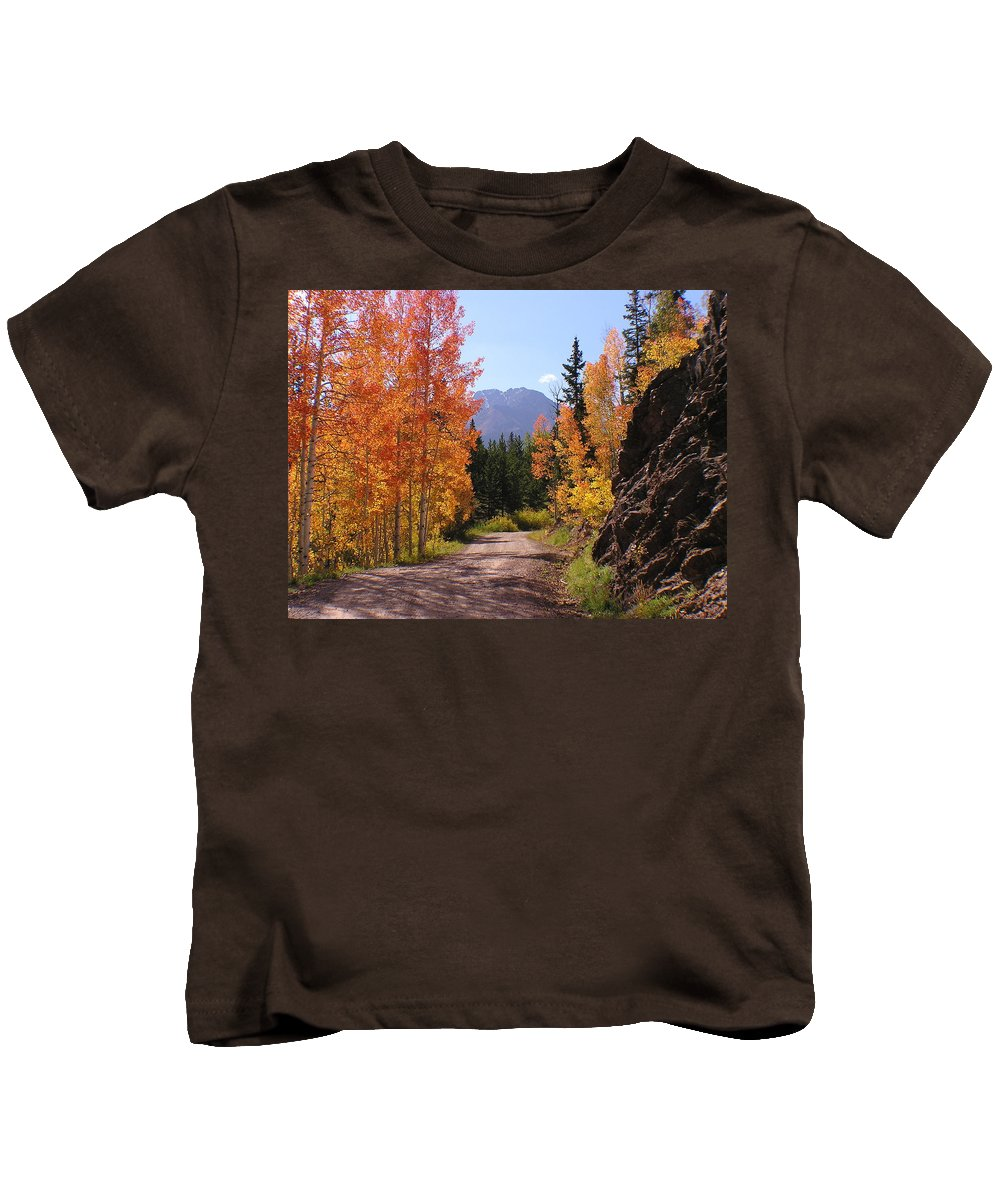 Trees Kids T-Shirt featuring the photograph Fall In Colorado by Carol Milisen