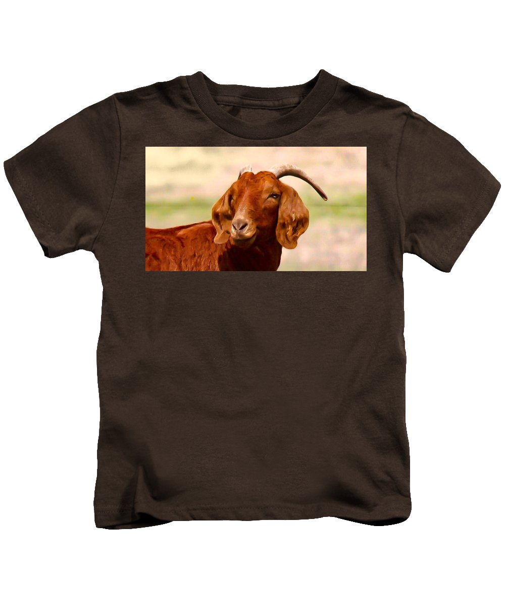 Goat Kids T-Shirt featuring the photograph Fancy The Red Goat by Jeanie Mann