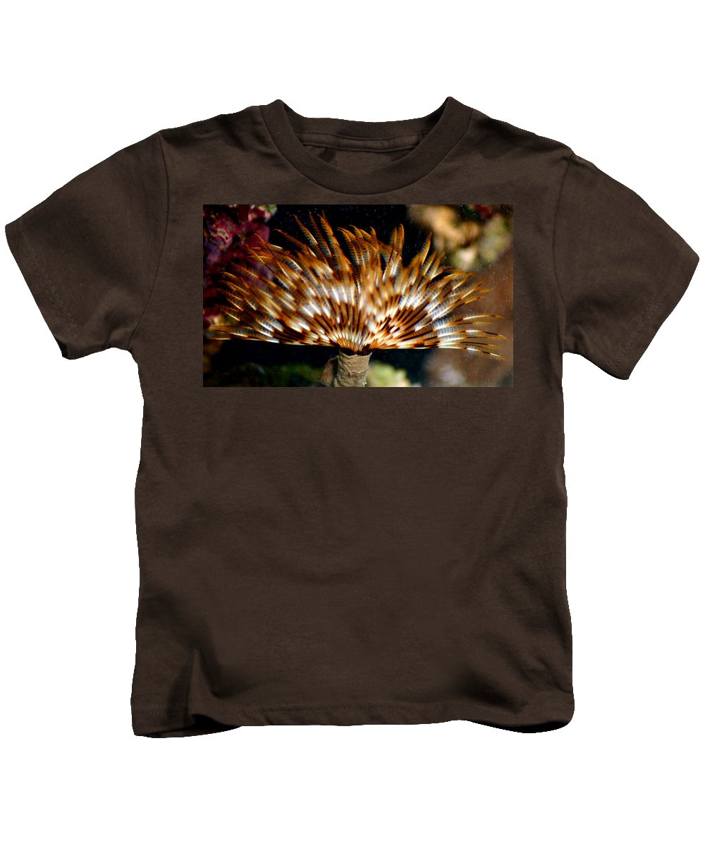 Feather Duster Kids T-Shirt featuring the photograph Feather Duster by Anthony Jones