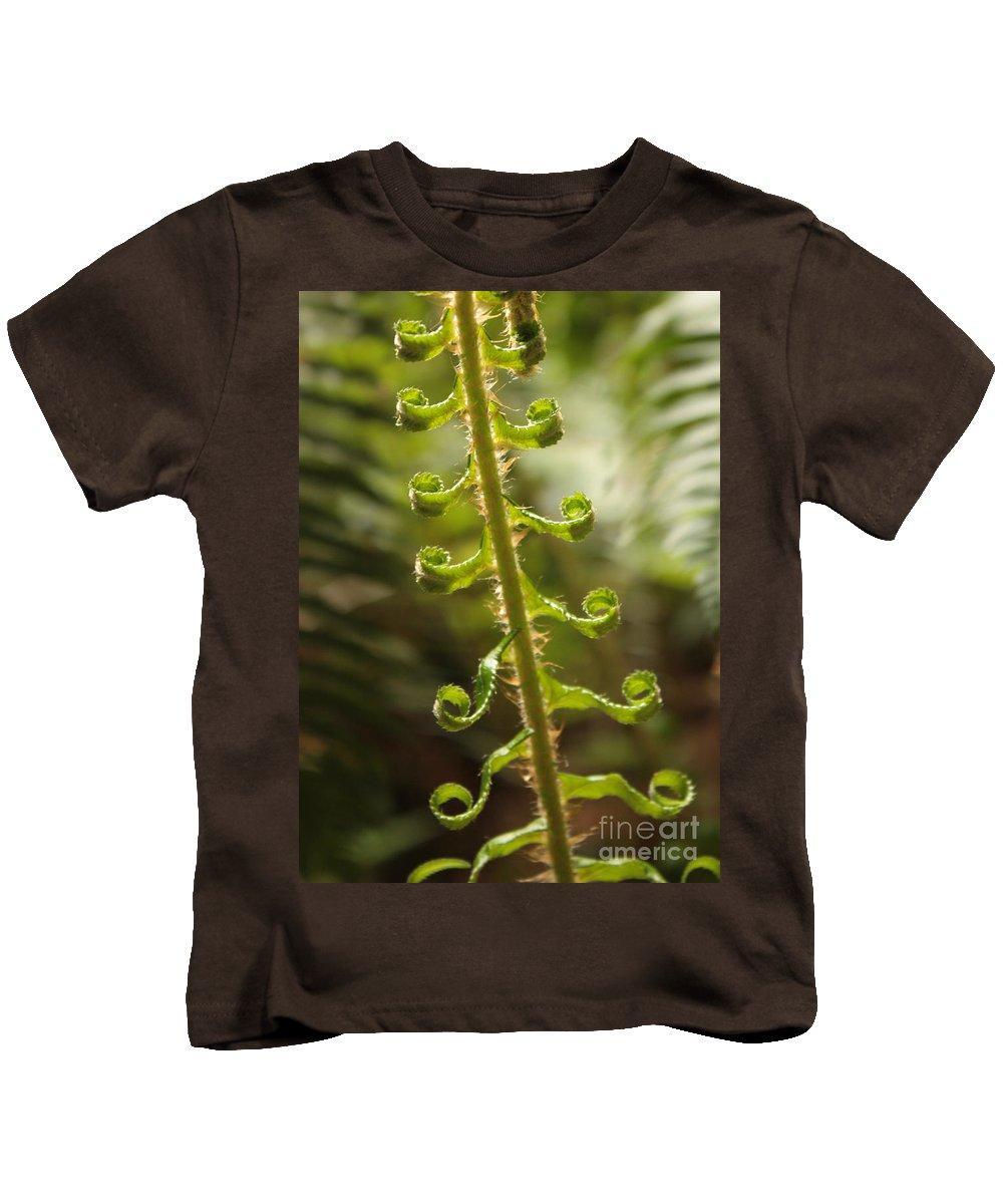 Fern Frond Kids T-Shirt featuring the photograph Fern Frond by Carol Groenen