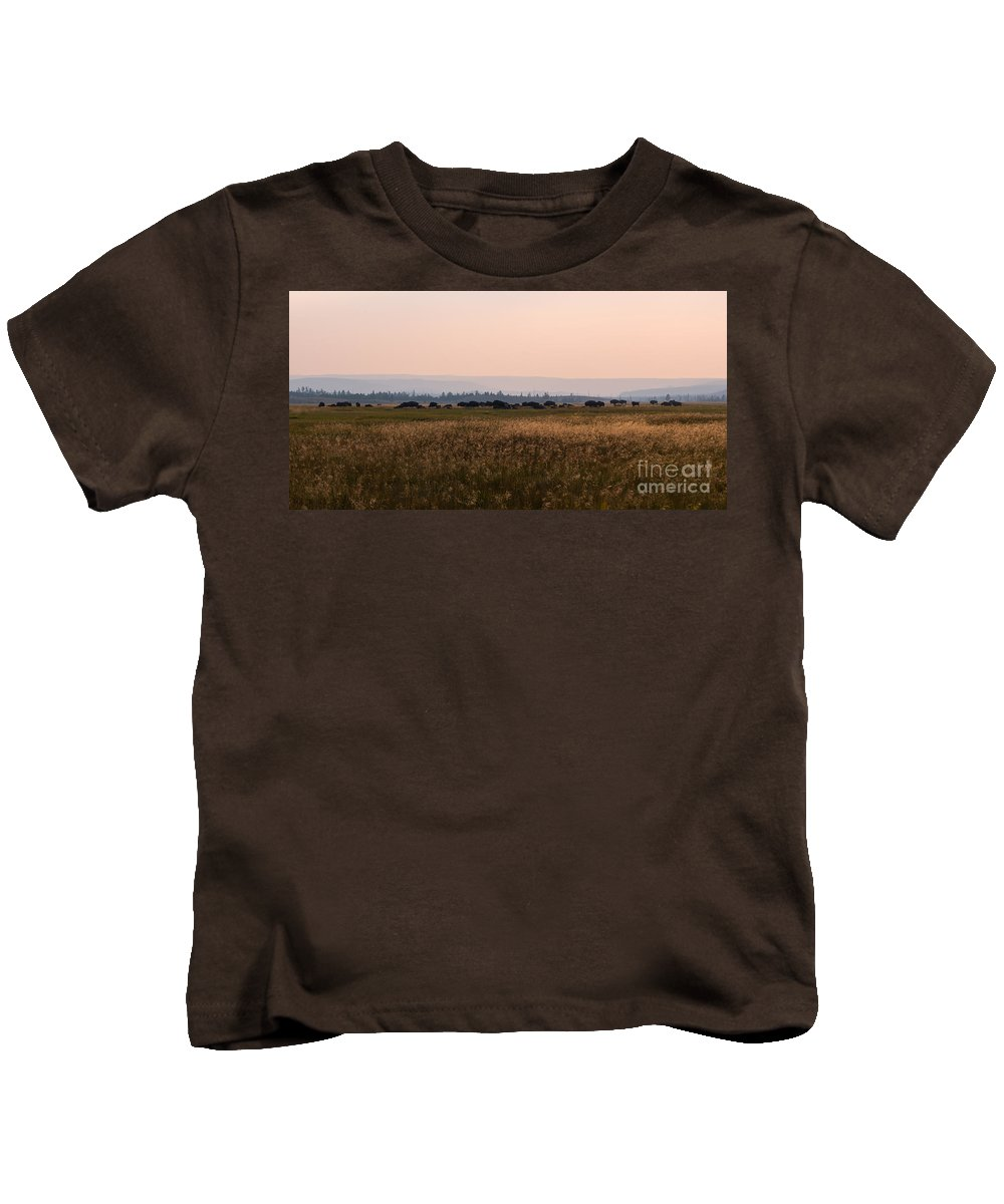 Herd Kids T-Shirt featuring the photograph Field Of American Bison by Michael Ver Sprill