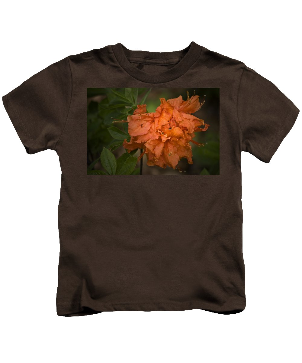 Flame Kids T-Shirt featuring the photograph Flame Azalea by Teresa Mucha