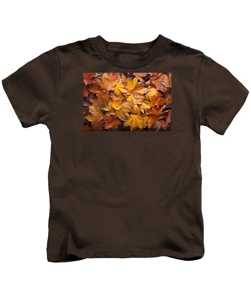 Maple Kids T-Shirt featuring the photograph Forest Floor by Steve Gadomski