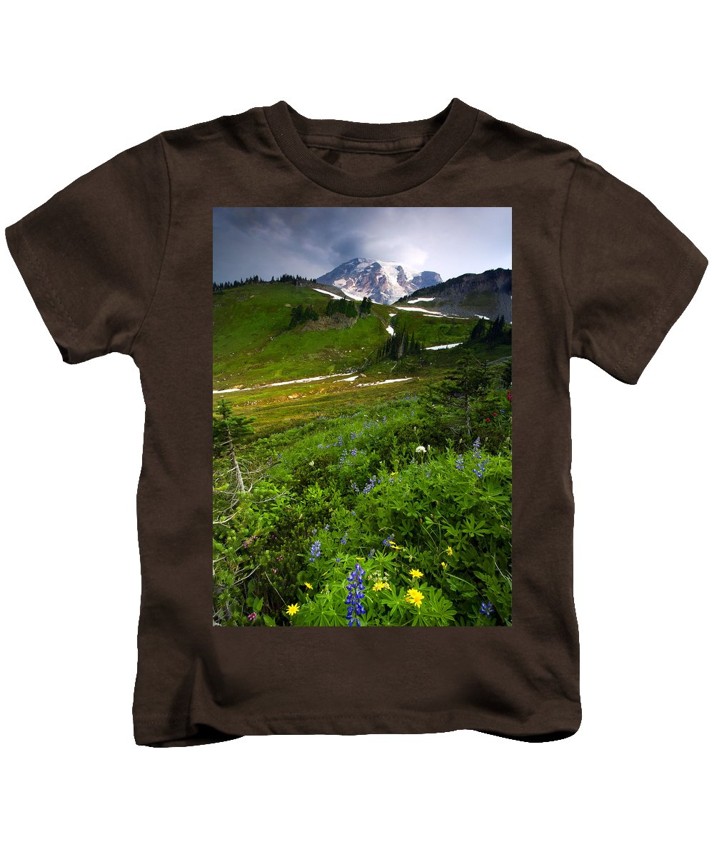 Rainier Kids T-Shirt featuring the photograph From The Top by Mike Dawson