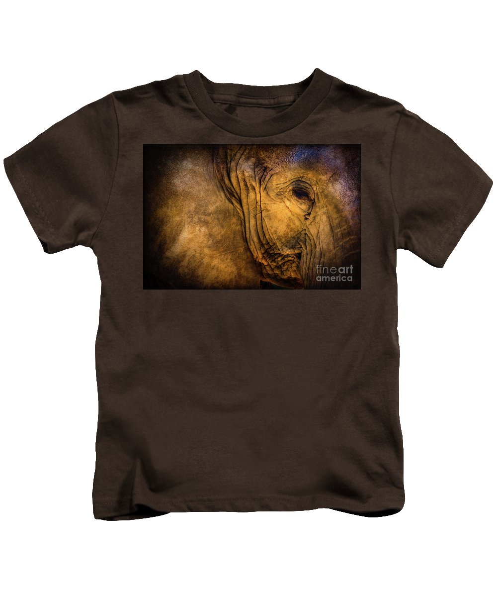 Golden Elephant Kids T-Shirt featuring the photograph Golden Elephant by Doug Sturgess
