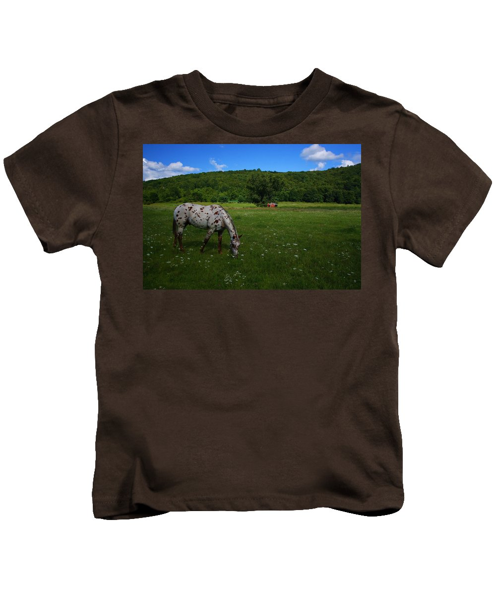 Landscape Kids T-Shirt featuring the photograph Grazing by Karol Livote