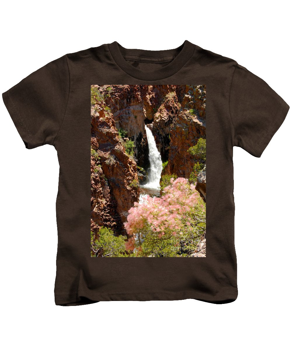 Water Fall Kids T-Shirt featuring the photograph Hidden Falls by David Lee Thompson