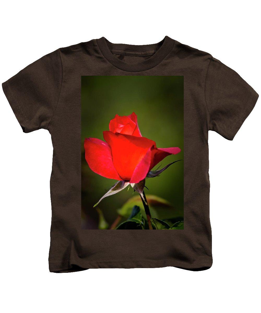 Garden Kids T-Shirt featuring the photograph Hot Cocoa Rose by Albert Seger
